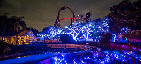 SheiKra with Christmas Lights