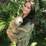 Busch Gardens Tampa Bay Blog Author