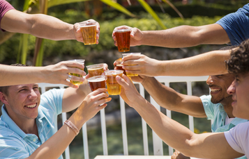 Beer Is Back at Busch Gardens Tampa Bay