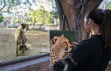 Cheetah Painting at Busch Gardens Tampa Bay