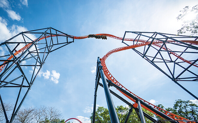 Tigris at Busch Gardens Tampa Bay. Florida's Tallest Launch Coaster.