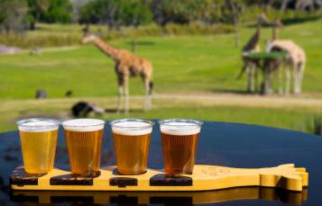Giraffe Bar Beer Flight