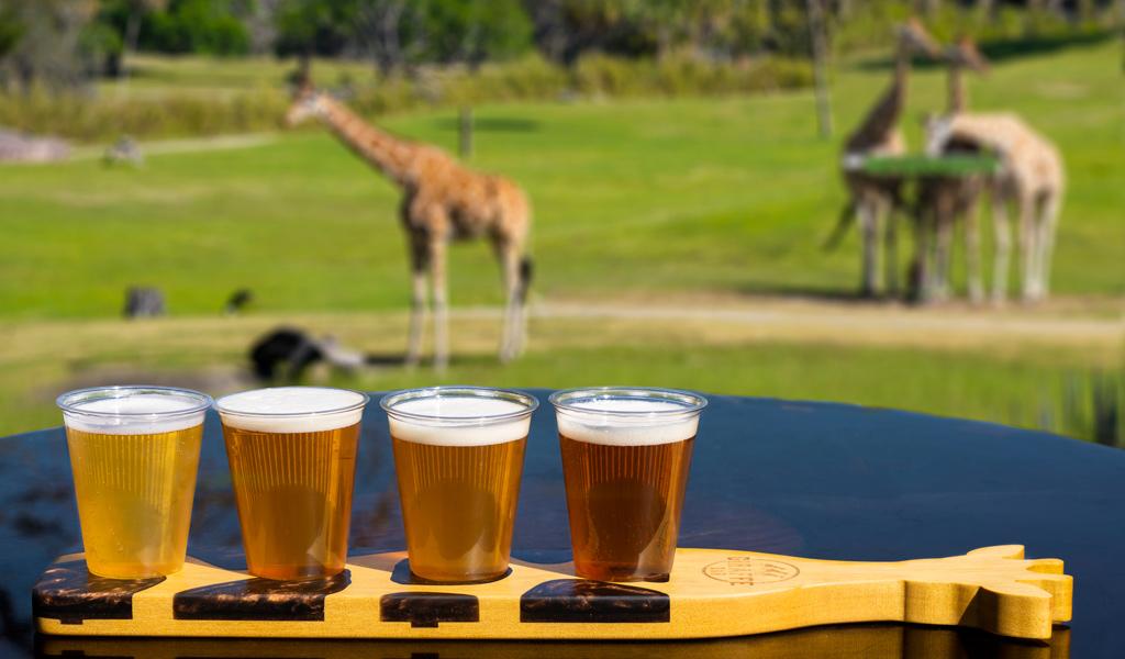 Beer Flight at the Giraffe Bar