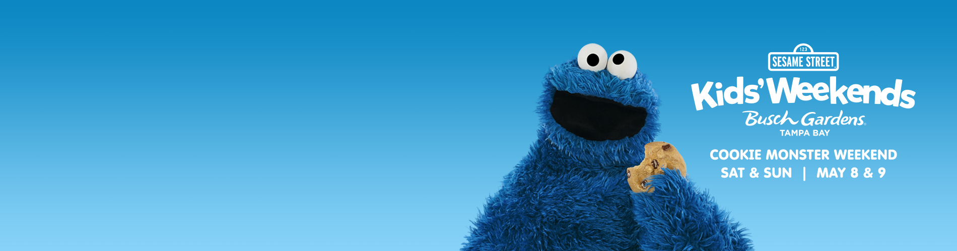 Cookie Monster from Sesame Street eating a Cookie