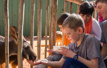 Kangaloom at Busch Gardens Tampa Bay