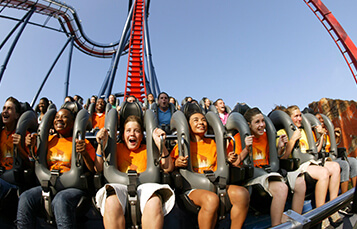 7-8 Day Camps at Busch Gardens Tampa Bay