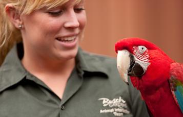 Educational Networking Programs for Teacher Busch Gardens Tampa Bay