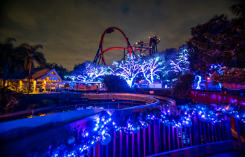 Christmas Lights and Decorations in front of SheiKra