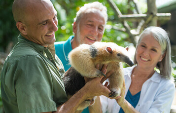 Sterling Values at Busch Gardens Tampa Bay