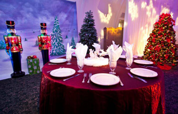 Hold Corporate Events at Busch Gardens Tampa Bay