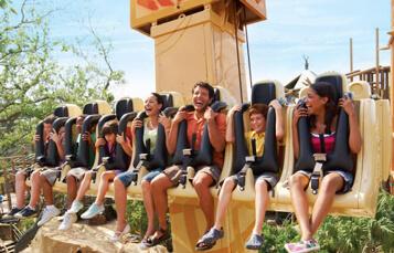 Ride the Wild Surge at Busch Gardens Tampa Bay