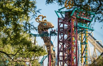Cobra's Curse roller coaster at Busch Gardens Tampa Bay