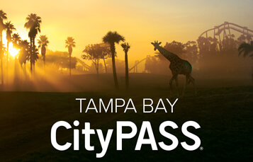 Book a CityPass Tampa Bay Vacation Package