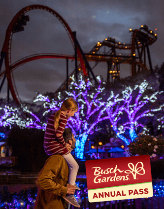 Become an Annual Pass Member and visit during Christmas Town and other great events