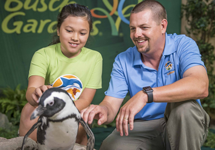 Camps and Education Programs at Busch Gardens Tampa Bay