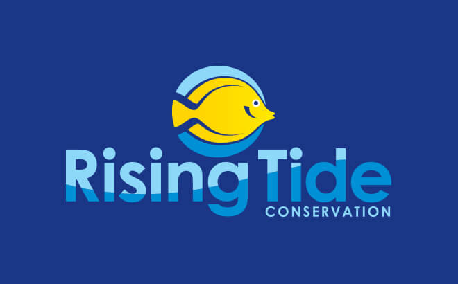 Rising Tide Conservation Fund at Busch Gardens Tampa Bay
