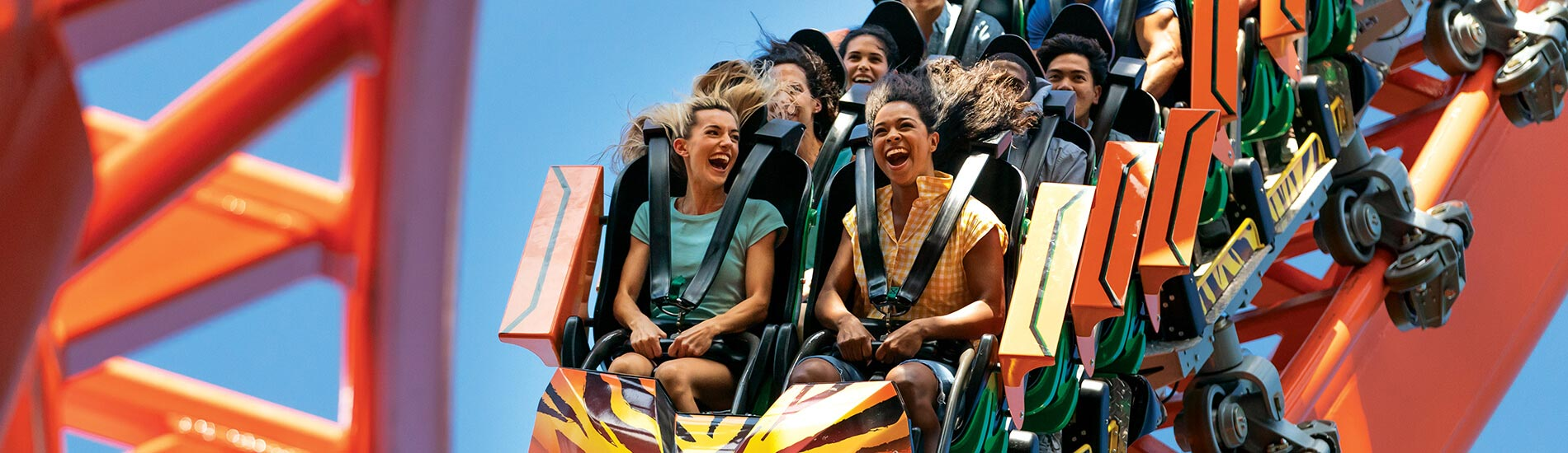 Busch Gardens Tampa Bay brings a new level of excitement with FLORIDA'S TALLEST LAUNCH COASTER.