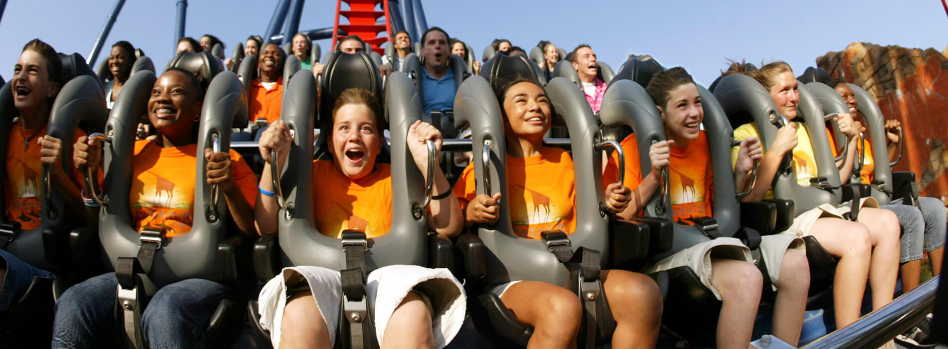 A large group of kids and teens riding a roller coaster at Busch Gardens Tampa Bay, located in Florida