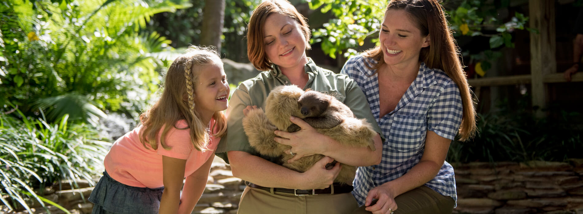Educational Programs at Busch Gardens Tampa Bay