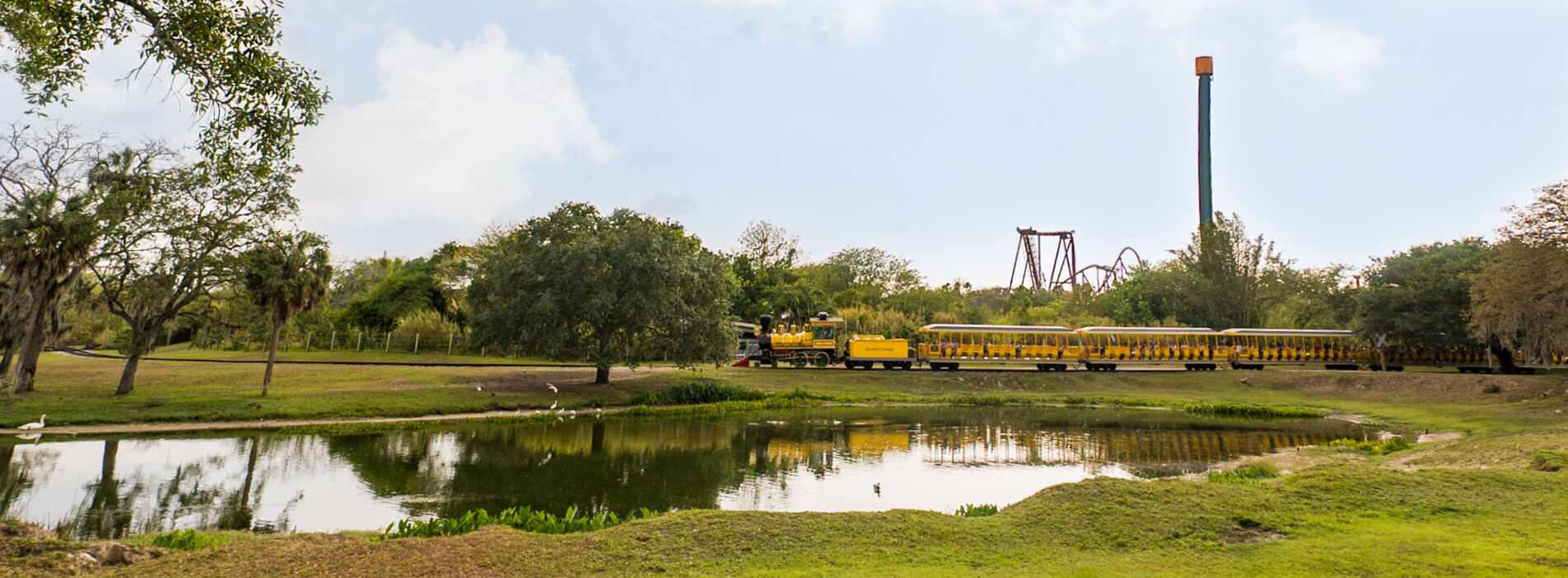 Ride the Serengeti Railway at Busch Gardens Tampa Bay