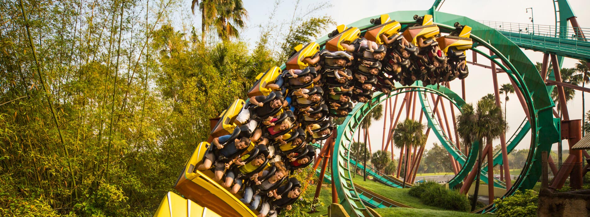 A group of people enjoy the thrill riding through multiple loops on a teal, red, and brown roller coaster called Kumba at Busch Gardens Tampa Bay, located in Florida.