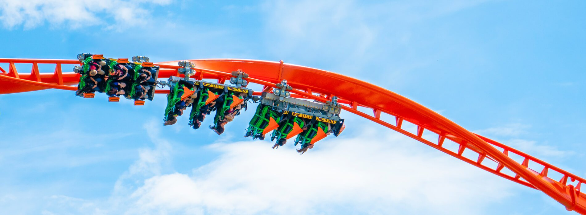 An orange and black roller coaster called Tigris, located at Busch Gardens Tampa Bay, located in Florida