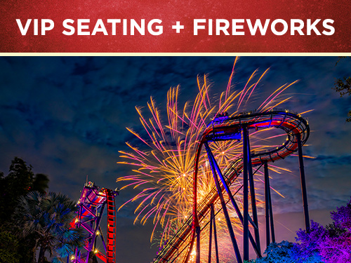 VIP Seating Plus Fireworks at Busch Gardens Tampa Bay