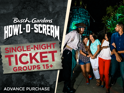 Busch Gardens Tampa Bay Howl-O-Scream Single-Night Tickets for Group 15+