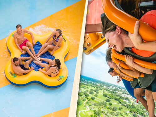 Single-Ticket Tickets for USF Students to Adventure Island or Busch Gardens