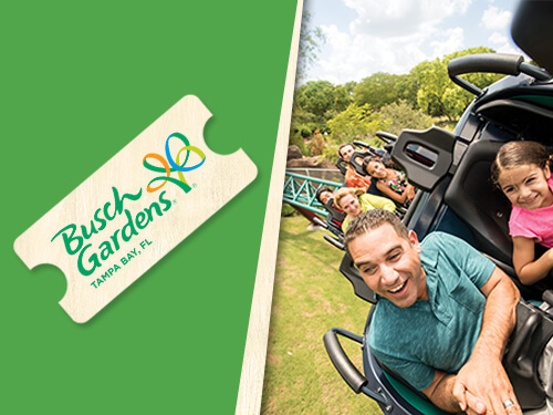 Enjoy one visit to Busch Gardens Tampa Bay