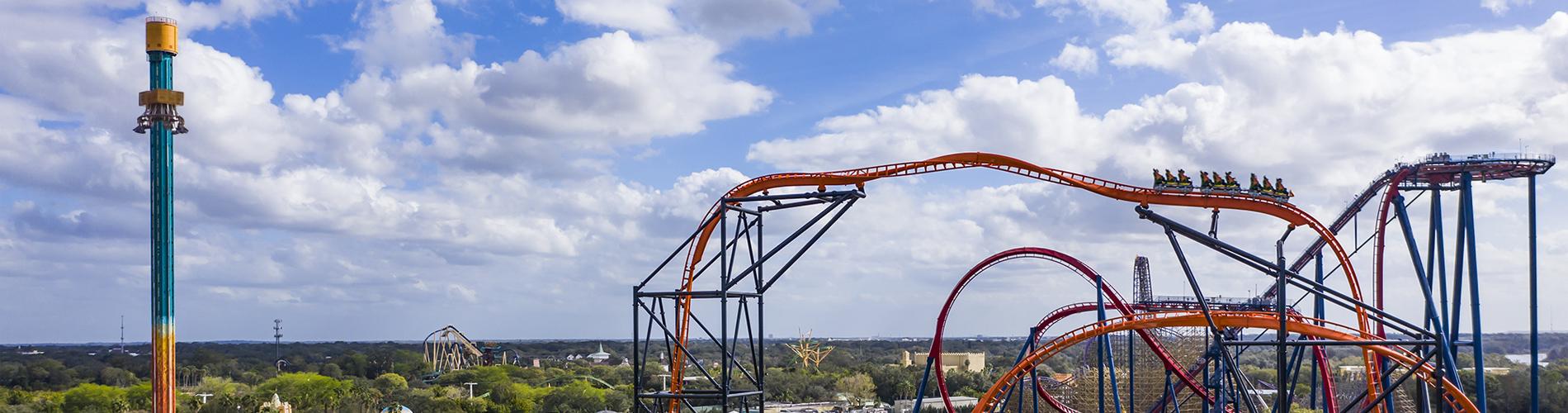 Falcon's Fury, Tigris and SheiKra at Busch Gardens Tampa