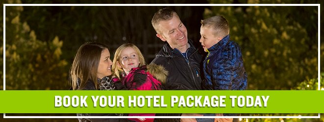Get hotel accomodations, theme park tickets and more with a Busch Gardens Vacation Package