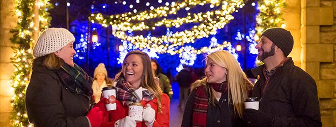Lights on Ireland bridge at Busch Gardens Christmas Town