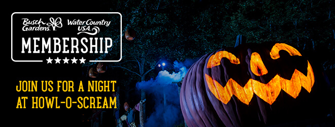 Enjoy one night of Howl-O-Scream only available to current Members