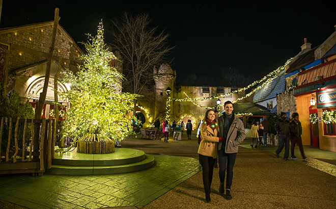 Douglas OFir Tree Lot in Ireland during Christmas Town at Busch Gardens Williamsburg