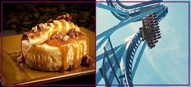 Cheesecake + Griffon