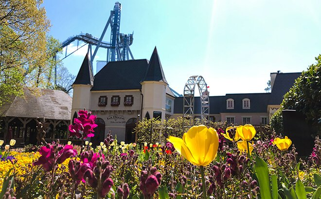 Busch Gardens Williamsburg Virtual Conferencing Background