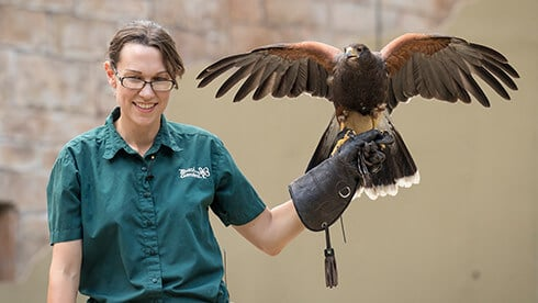 Meet our Animal Ambassadors at Busch Gardens