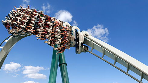 Find important accessibility information about our theme park