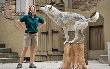 Virginia summer camps at Busch Gardens for ages 12 - 13