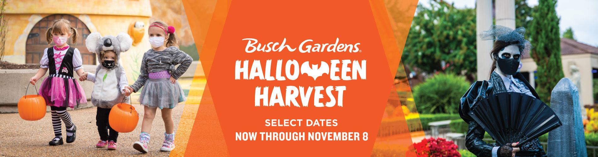 Busch Gardens Halloween Harvest Event - Select Dates, now through November 8