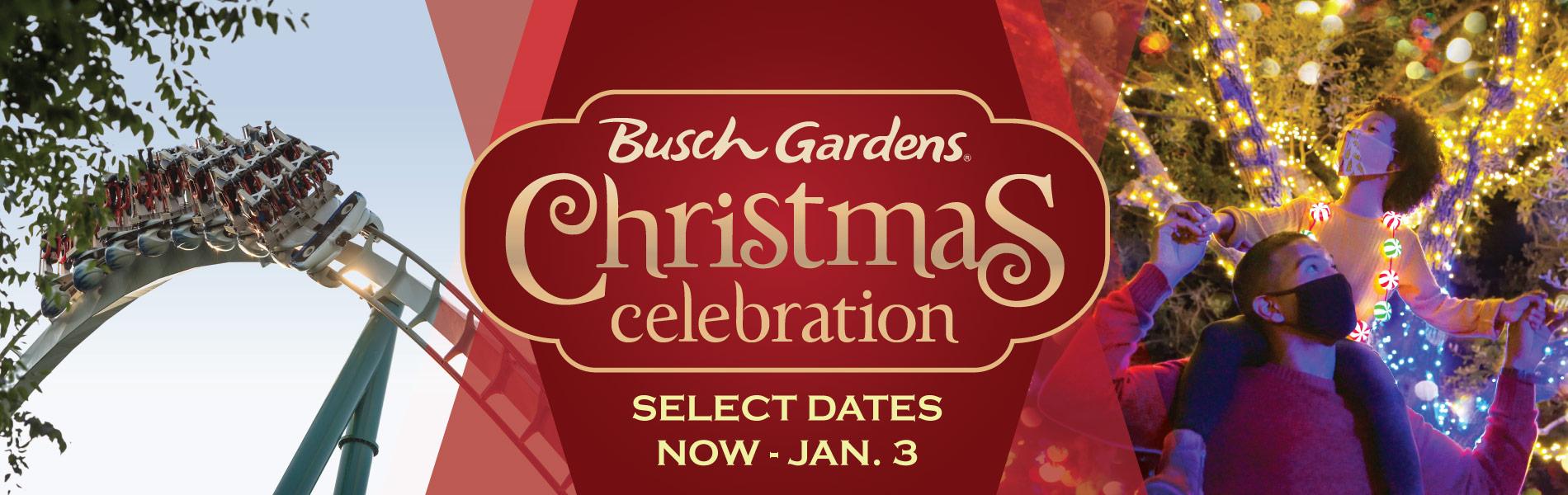Christmas Celebration   Williamsburg Holiday Event   Busch Gardens Williamsburg