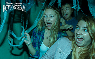 Make your way through haunted houses at Howl-O-Scream