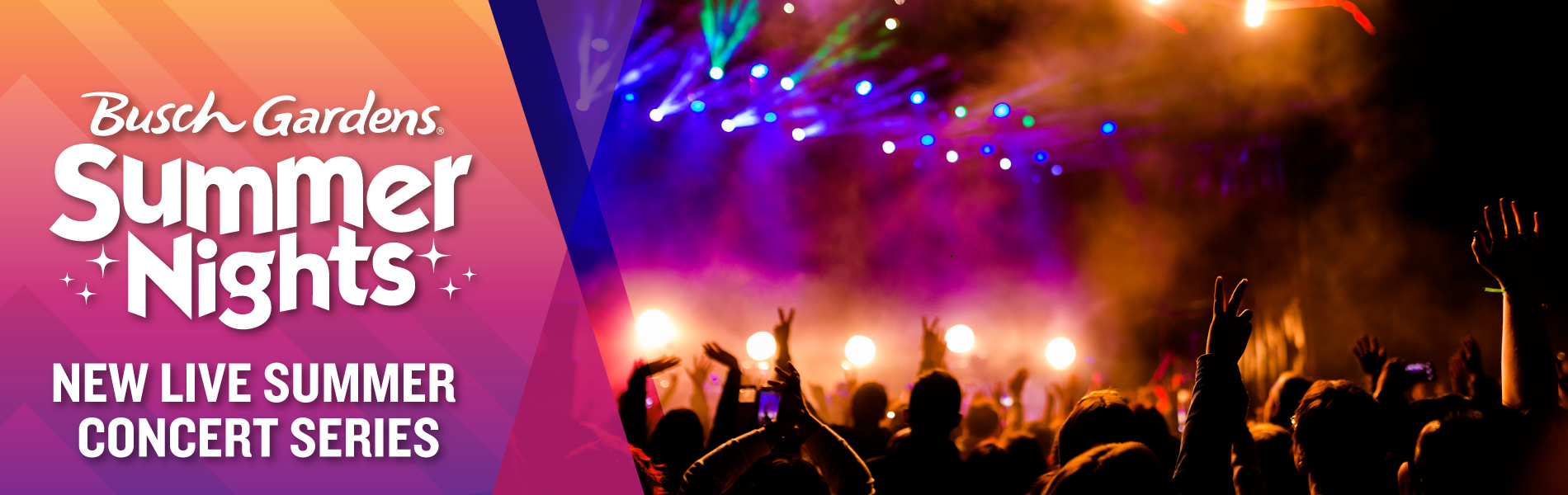 All-New Live Summer Concert Series
