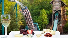 Taste of Busch Gardens Williamsburg