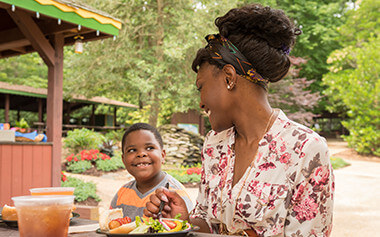 Enjoy a meal with your group in the Black Forest Picnic Area