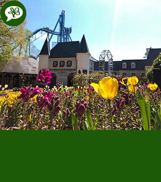 Busch Gardens Williamsburg Blog