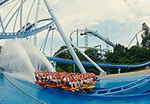Thrill rides and family attractions at Busch Gardens