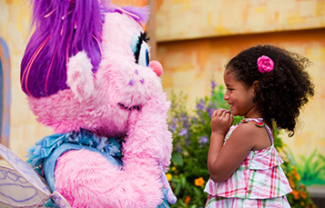 Sesame Street Forest of Fun includes a show with the characters, photo opportunities, kids rides, playground, and  water play area.