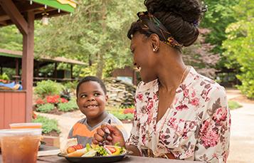 Busch Gardens Williamsburg Everyone Eats Free Package